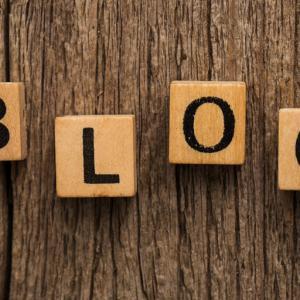 ブログ運営報告 8ヶ月目の実績報告【コアアプデ被弾!対策できてる!?】