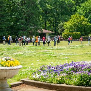 智光山公園のバラ3