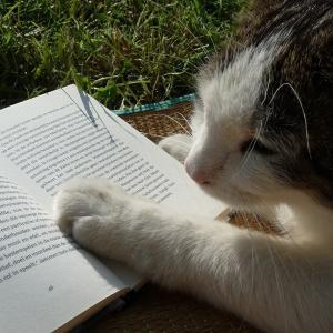 愛玩動物飼養管理士(2級)の勉強中です!