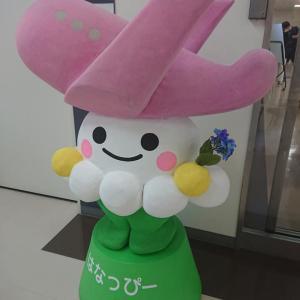 神戸空港から花巻空港へ~おときゅうの旅(1)