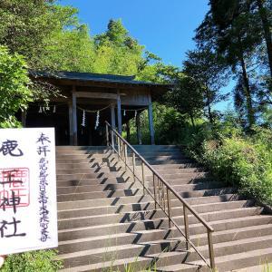 鹿王神社【鹿児島】北山地区の産土神として信仰が厚く鹿王権現とも称している