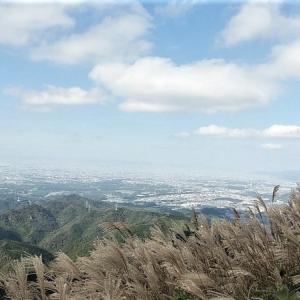 初秋の岩湧山登山~ススキと花の頂へ