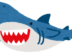 【画像】サメの歯で作った武器、攻撃力高そうwwwwww