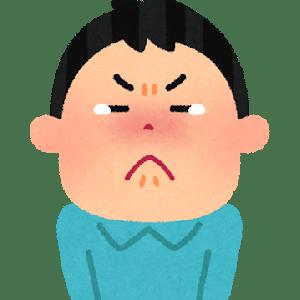 【悲報】へずまりゅうさん、減刑狙いで号泣してしまう