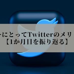 ブログやりながらTwitter運用するとどうなる?【1か月目】