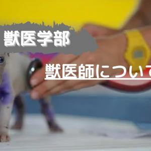【北海道大学 獣医学部】取得できる資格(獣医師)