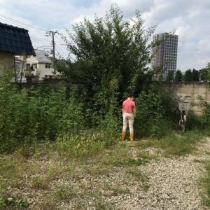 木を切る アパート編