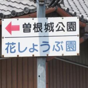Gifu/ The Sone Park