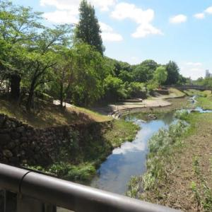 Gifu / Shimizu Park