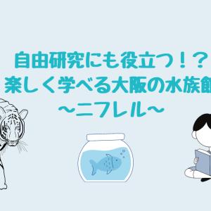 ニフレル【自由研究のテーマにピッタリ!学べる大阪の水族館】