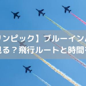 【パラリンピック】ブルーインパルスはどこで見る?飛行ルートと時間を解説!