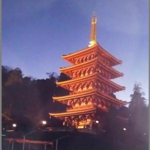ライトアップの高幡不動五重の塔  &    よみうりランドのイルミネ―ション