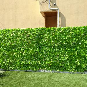 夏にピッタリ!! グリーンカーテンを使ってフェンスの目隠し