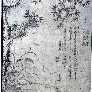 【いつもニコニコ】人面樹【妖怪図鑑】