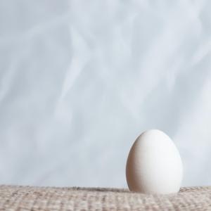 卵子凍結②【説明会に参加/停滞期にしたこと/男女の考え方のズレ】