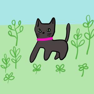 近所の黒猫が来たら我が家のねこがいつもと違っておどろいた話
