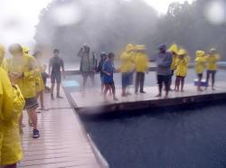 パラオダイビング一人旅「台風2004②」ドルフィンズパシフィック・ジャングルドライブ