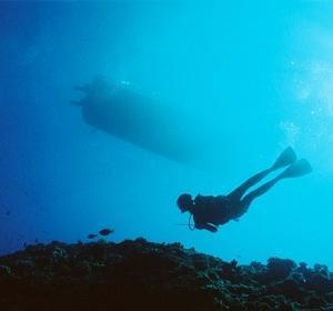 中年オヤジ一人旅!パラオ2006 GW②深海の珍ハゼに会いに行くダイビング「ダウンカレントにつかまった!」