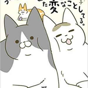 お気に入りコミックエッセイ 〜猫編〜