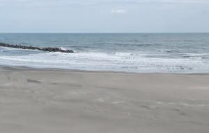 海に流された知らない男児を助けようとしたパキスタン人(36)溺れ亡くなる 茨城県神栖市