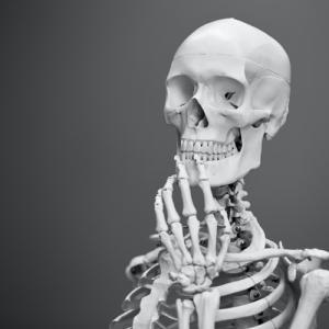 骨の働きと役割 骨が弱くならない為には