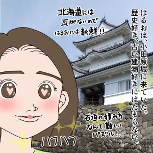 小田原城ではしゃぐはるおさん