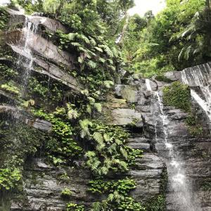 西表島旅行記④初心者におすすめ【ゲータの滝トレッキングツアー】
