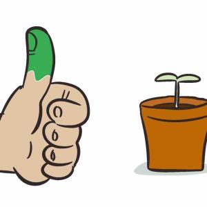 緑の親指?