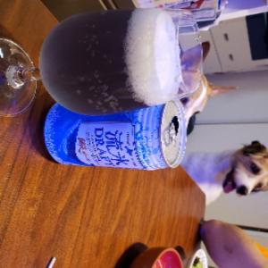 網走ドラフトビール&ジャックラッセルテリア