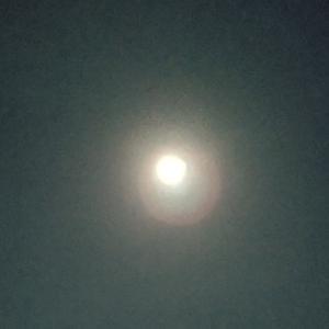 お月さまを 見たんだ