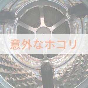 ドラム式洗濯乾燥機の意外なホコリ「洗濯物が臭う」「乾きが遅い」の原因かも?