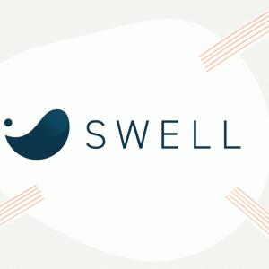 【レビュー】有料テーマは「SWELL」で決まり!!難しいことをせずにブログを楽しめます