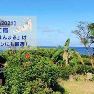 【屋久島2021】ねこ宿「旅人の宿まんまる」はワーケーションにも最適!