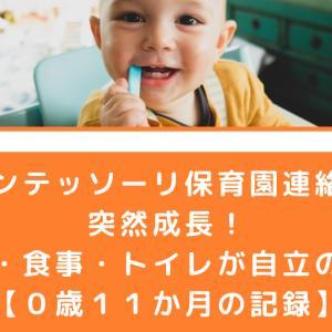 【モンテッソーリ保育園連絡帳】突然成長!家事・食事・トイレが自立の一歩【0歳11か月の記録】