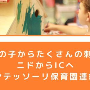 【年上の子からたくさんの刺激を】ニドからICへ【モンテッソーリ保育園連絡帳】