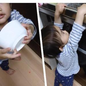 【1歳5ヶ月】完食する喜びを覚えた次男サンオくん