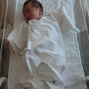 妊娠中、頭が大きいと言われ続けた次男の現在【1歳7ヶ月】