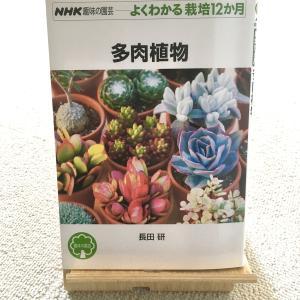 多肉植物を育てる時に持っておきたいこの一冊