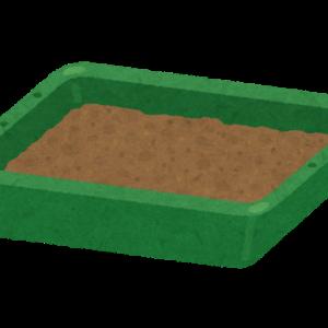 多肉植物を育て始めた時、一番悩んだ土の配合ーオリジナルブレンドを簡単ですがご紹介しますー