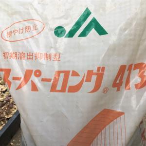 スーパーロング413 多肉植物愛好家にも評判の肥料を使ってみた