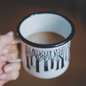 在宅ワークのお供、カルディ(KALDI)の紅茶・お茶 私的リピート3選