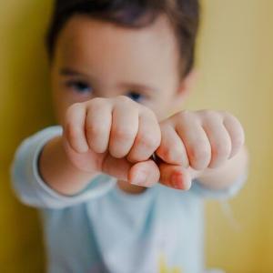 探偵ナイトスクープ「両手をグーで生活する2歳児」が話題!感想・反応まとめ