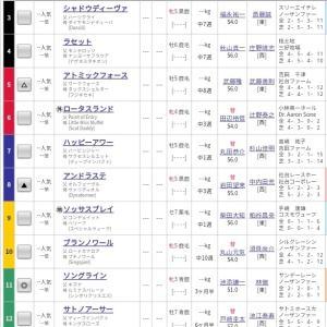 関屋記念開催サイン馬