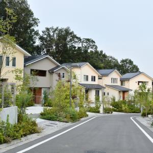 我が家のマイホーム計画②我が家が新築建売り物件を探す理由