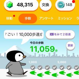 【運動】久しぶりに10000歩