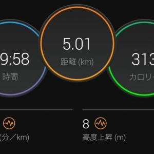 閾値走5km+500m&月間200km