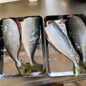 もらった魚の煮つけに挑戦!