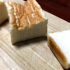 生米をパンに変える!「生米パン」作りと子供たちの苗