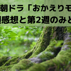 NHK朝ドラ「おかえりモネ」第1週感想と第2週のみどころ【NHK朝ドラ】