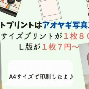 L版1枚7円・A4サイズ1枚80円~ネットプリントはアオヤギ写真工芸社で決まり!